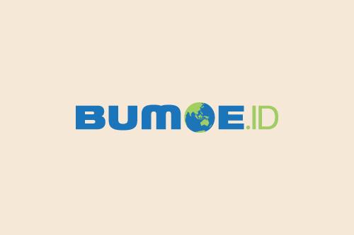 BumoeID Bumoi, Teknologi dan Konspirasi